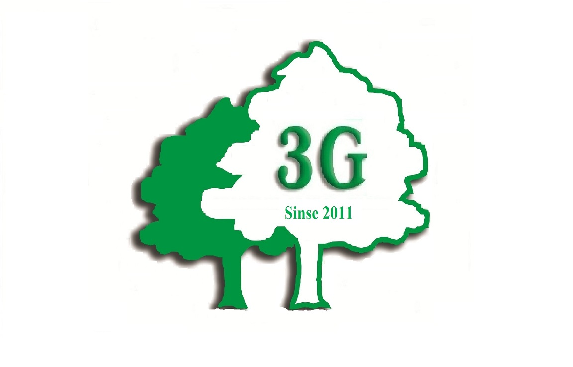 3G – Georgian Global Group